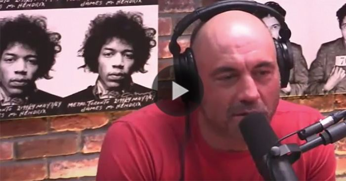 Joe rogan reacts to gsp moving up in weight for bisping title fight mma imports for Joe rogan madison square garden