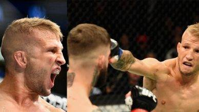 UFC fighters react to T.J. Dillashaw knocking out his former teammate Cody Garbrandt to win the UFC bantamweight title at UFC 217 in Madison Square Garden.